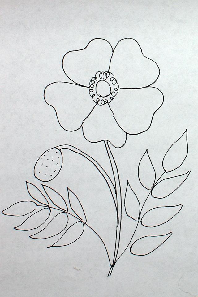 Easy to draw flowers how to draw poppy step 5 for details mightylinksfo